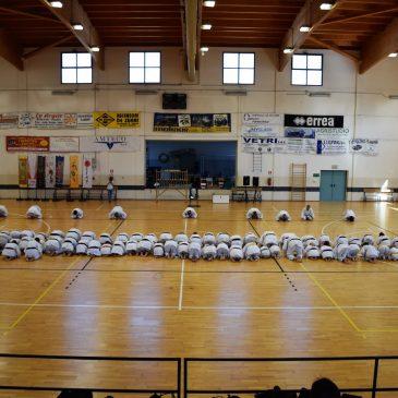 Stage A.C. Kookan e Allenamento di gara: Vercelli 1 Maggio 2019