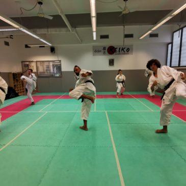 Parte alla grande il Corso di Karate